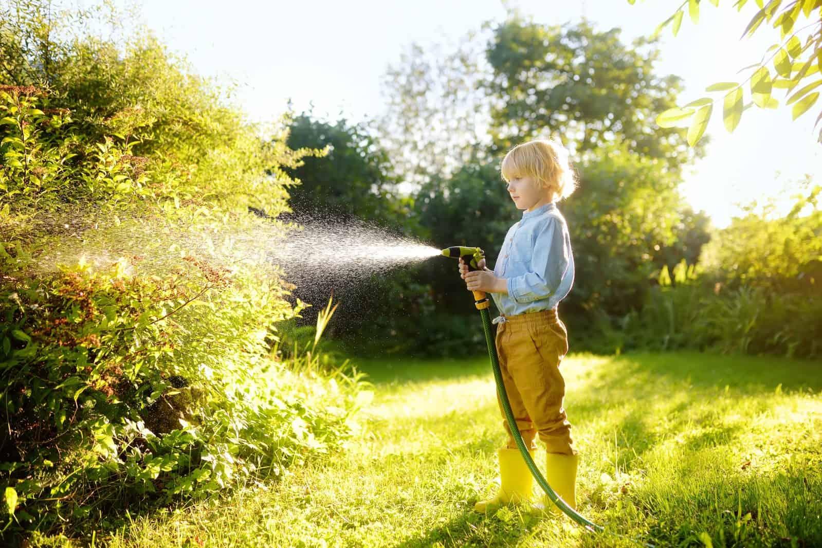 hose-play-backyard-kid-garden-water-having-fun-fun-summer-sprinkler-boy-child-watering-plant-sun_t20_E0KVBK
